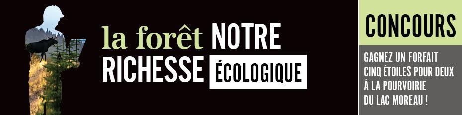 La forêt notre richesse écologique