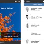 La nouvelle application Mon arbre fournit de l'information sur les forêts urbaines