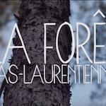 La forêt bas-laurentienne (court-métrage)
