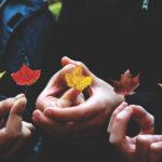 Offre d'emploi pour étudiants : Agent-e de projet conservation et éducation