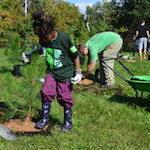 Partenaire : La TD souligne le 150e anniversaire du Canada en revitalisant plus de 150 espaces verts publics
