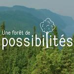 Découvrez la nouvelle vitrine web Une forêt de possibilités
