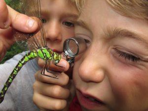 Observer la nature avec les enfants