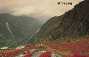 Parc national des Hautes-Gorges – Bientôt une ouverture à l'année