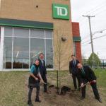 Annonce: renouvellement du soutien financier du Groupe Banque TD  à l'AF2R pour le verdissement du Grand Québec