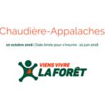 Viens vivre la forêt: inscrivez vos classes à la première édition en Chaudière-Appalaches !