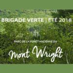 Brigade verte du mont Wright: Au service du parc et de ses usagers