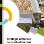 Stratégie nationale de production de bois – Le ministère des Forêts, de la Faune et des Parcs lance son processus de consultation