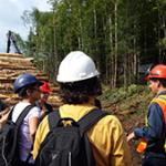 Planification forestière – La consultation et l'acceptabilité sociale au cœur de l'aménagement forestier