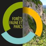 Québec soutient la recherche forestière et étend son réseau de partenaires