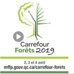 Capsules vidéo: un avant-goût du Carrefour Forêt 2019