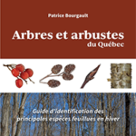 Arbres et arbustes du Québec