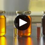 La semaine verte: Le microbiote de l'eau d'érable