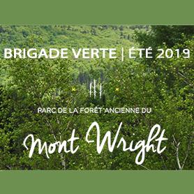 Brigade verte du mont Wright: au service du parc et de ses usagers !
