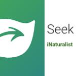 Seek: une application pour identifier une plante ou un animal