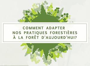 Colloque de l'AFSQ – Comment adapter nos pratiques forestières à la forêt d'aujourd'hui?