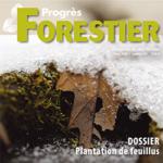 Le Progrès forestier – Hiver 2020