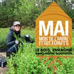 COVID-19 – Annulation de l'édition 2020 de la campagne de distribution d'arbres du Mois de l'arbre et des forêts