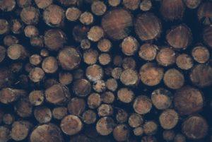 FORUM INNOVATION BOIS : Le MFFP annonce 38 M$ pour l'innovation dans l'industrie des produits du bois