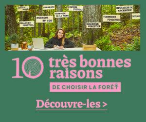 10 très bonnes raisons de choisir la forêt !