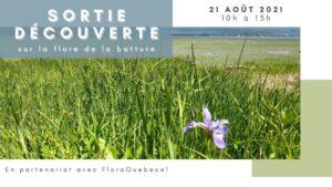 Inscrivez-vous: Sortie découverte sur la flore de la batture à l'île d'Orléans – 21 août 2021